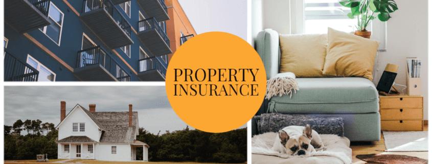 Property Insurance Littleton, CO
